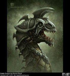 Battle Dragon by Kerem Beyit
