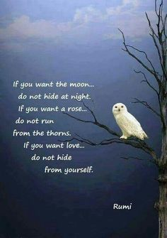If you want love don't hide from yourself