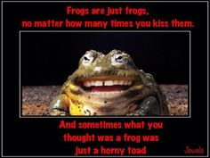 Frogs Are Just Frogs