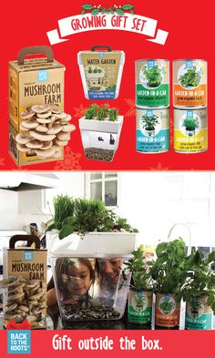 How will you keep your kids happy and healthy this holiday season? Teach them to grow their own food with an indoor edible garden set from Back to the Roots. Grow organic herbs at home! Learn more about growing your own food at home at http://backtotheroots.com/products/deluxegrowingset