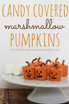 this is perfect for halloween!! I love the pretzel stems!  Candy Covered Marshmallow Pumpkins