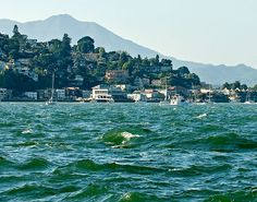 Sausalito, California, photo by Pelican Studio in , Sausalito, Ca.