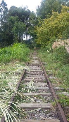 abandon narrow gauge track Don Abel By Train, Train Tracks, Train Rides, Abandoned Train, Abandoned Places, Runaway Train, Photography Studio Background, Long Way Home, Ferrat