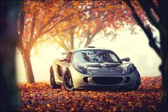 Lotus Elise in the fall.