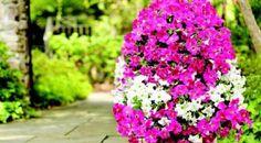 Comment fabriquer une tour à fleurs!