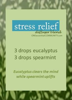 stress relief eucalyptus spearmint diffuser blend-- Plus 15 more SPRING DIFFUSER BLENDS