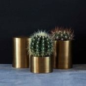 Image of Brass Storage Jars