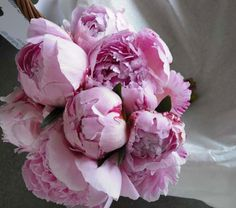 Peonies, the only time I like pink!!