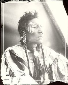 Spotted Horse - Crow - 1900