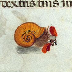 snailchicken  book of hours, Bruges ca. 1500 (Baltimore, Walters Art Museum, Ms. W.427, fol. 56v)