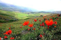 The State of Gilan, Iran