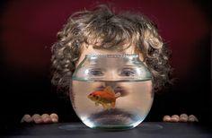 Secondo premio sezione Animali domestici: Kike Balenzategui, Spagna