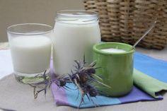 Yogurt fatto in casa facile facile