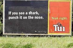 new zealand tui beer.The Best Of The Tasteless Tui's Billboards Beer Memes, New Zealand Houses, Kiwiana, Beer Brands, Mission Accomplished, Advertising, Ads, Billboard, Good Things