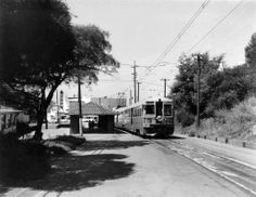 """F"" train at Solano & The Alameda, Berkeley, September 1956. John Stashik Collection"