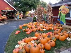 Sonny Acres Farm in West Chicago, IL