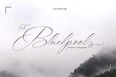 It's an glyphs Blackpool Script, including Alternate and International support for most Western Languages is included. Blackpool come with 540 Great for business posters, etc. Modern Typeface, Modern Script Font, Script Type, Script Fonts, New Fonts, Cool Fonts, Modern Calligraphy, Pretty Fonts, Beautiful Fonts