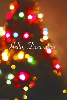 winter and hello december image Hello December Pictures, Hello December Quotes, Hallo November, Hello January, Winter Images, Winter Photos, Iphone Wallpapers, Christmas Background Photography, December Wallpaper