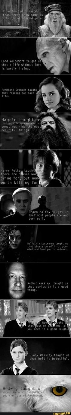 Funny pictures about The Moral Of Harry Potter. Oh, and cool pics about The Moral Of Harry Potter. Also, The Moral Of Harry Potter photos. Harry Potter World, Saga Harry Potter, Mundo Harry Potter, Harry Potter Jokes, Harry Potter Characters, Harry Potter Universal, Lily Potter, Hogwarts, Harry Porter