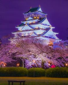 Osaka castle at night 📷 mie Aesthetic Japan, Japanese Aesthetic, Travel Aesthetic, Japanese Landscape, Fantasy Landscape, Asia Travel, Japan Travel, Wonderful Places, Beautiful Places