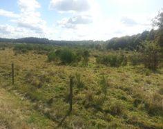 Fietsroute Montferland en omgeving