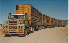 truckingworldwide:   kenworth custom road train