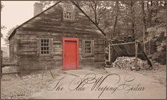 The Olde Weeping Cedar