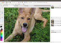 Simple image editor. Linux, OS X, Windows.
