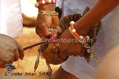 Killing a chicken, voodoo in Benin