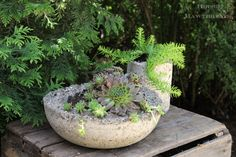Making Lightweight Hypertufa Planters