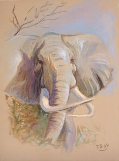 Artwork >> Till Dehrmann >> Elephant african I (canvas oil) - Inches x 16 Inches) African Elephant, Pet Birds, Pastels, Canvas, Artwork, Animals, Painting, Painting Abstract, Abstract