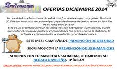 ¿ Ya conoces las ofertas de Safracan, clinica veterinaria de #yecla de Diciembre? ¡ No te las pierdas !