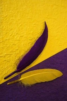 Contrast ~ Purple and Yellow