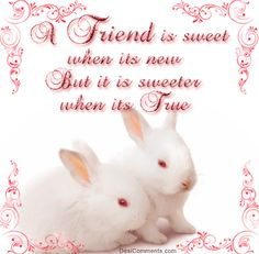 Happy Friendship Day Quotes - Wishes - Messages - Wallpapers - Pictures - Images