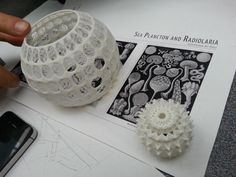 Radiolarians : Andrei Jippa is 3D printing with his RepRap