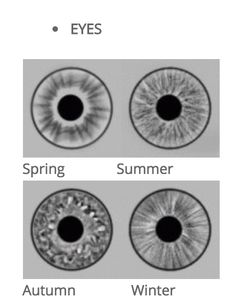 Eye patterns for seasons Deep Winter Colors, Spring Colors, Cool Winter, Winter Snow, Summer Eyes, Summer Sky, Soft Summer Color Palette, Eye Pattern, Seasonal Color Analysis