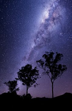 Cosmos | Flickr - by Andrew Tallon.Trip out to Moogerah for stars with the new 5D mkIII.