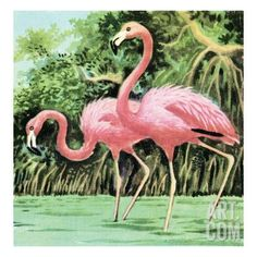 Two flamingos Art Print by Pop Ink - CSA Images at Art.com