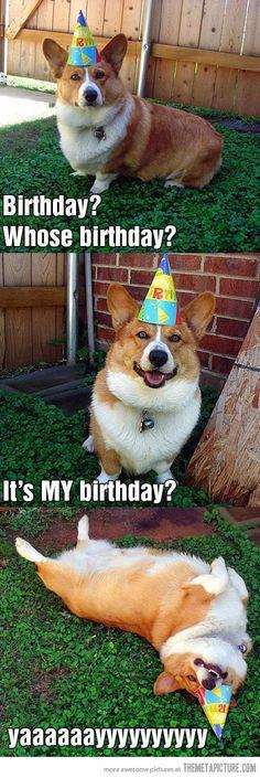 womppp. its myyy birthday today. ayyy. 22.
