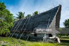 450764219-traditional-thatched-roof-hut-island-of-yap-gettyimages.jpg (507×337)