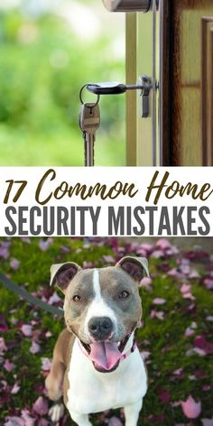 17 Common Home Security Common Home Security Mistakes - Even if a disaster never happens in your area, home security is still vital. In the United States, a burglary happens every 16 seconds. Home Security Tips, Wireless Home Security Systems, Security Cameras For Home, Safety And Security, Security Products, Personal Security, Survival Prepping, Emergency Preparedness, Survival Weapons