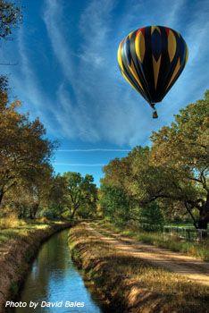 Bosque in Albuquerque, New Mexico, with a beautiful hot-air balloon!