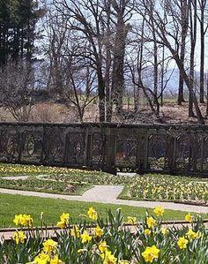 Cody Cookston - The Gardens at Biltmore Estate II