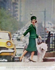 Vintage Old English Sheepdog