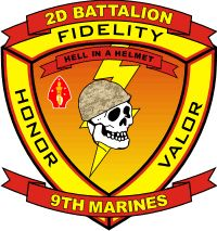 "The battalion my husband is in. Hell in a helmet. the wives are ""Hell in heels"" Hell yea! Usmc Love, Once A Marine, My War, Military Insignia, Us Marine Corps, Us Marines, Felt Hearts, Vietnam War, History Facts"