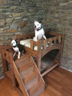 Custom Dog bunk bed with stairs - Pets - Tienda para Perros Dog Bunk Beds, Pallet Dog Beds, Bunk Beds With Stairs, Pet Beds, Dog Stairs For Bed, Pallet Dog House, Dog Bedroom, Dog Spaces, Diy Dog Bed