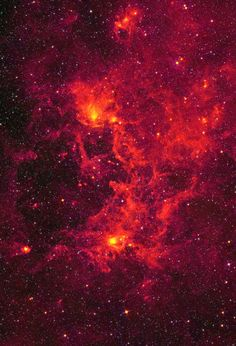 The Dragonfish nebula — named for its resemblance to a terrifyingly toothy…