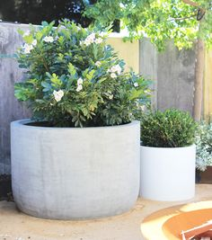 The Pietro U Planter is a contemporary shaped planter made from premium GRC (fib. The Pietro U Pla