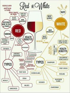 Red vs White wine anatomy. How they differ. {wine glass writer}