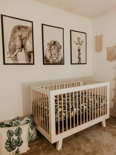 Baby Room Themes, Baby Boy Room Decor, Baby Room Design, Unisex Nursery Themes, Nursery Sets, Baby Girl Nursery Themes, Jungle Nursery Boy, Safari Theme Nursery, Safari Room Decor